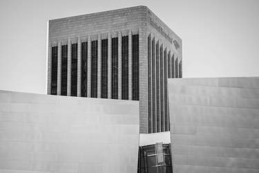 FEB 2017: Walt Disney Concert Hall, Downtown Los Angeles, Los Angeles